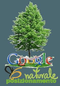 posizionamento naturale google