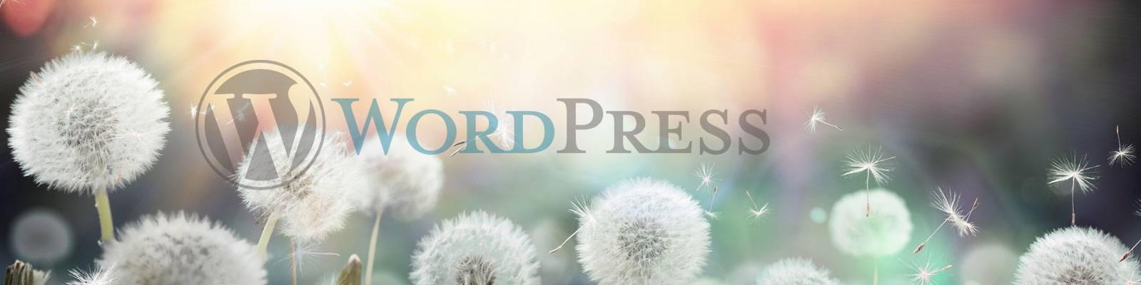 siti web wordpress lecco como milano monza