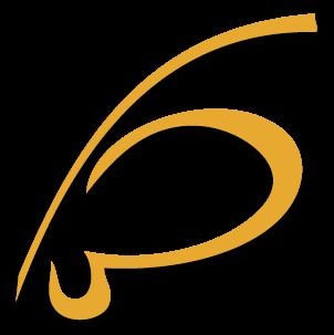 Alkimedia web agency design siti web designer
